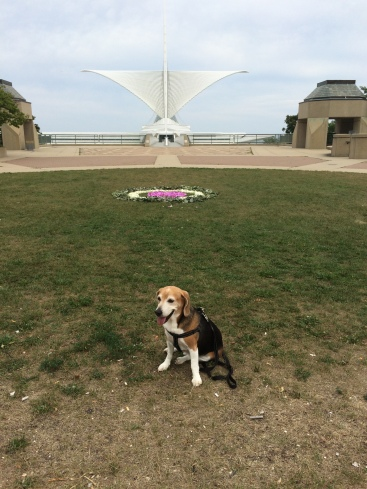 Snoopy posing in front of the Calatrava--Milwaukee Art Museum